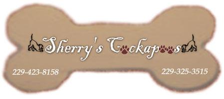 20070806180450_054334_logo